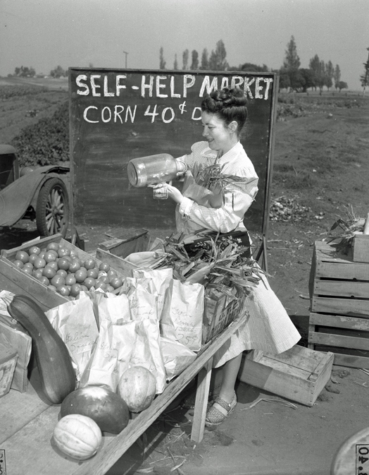 Customer at roadside honor system vegetable stand in Huntington Beach, Calif., 1948