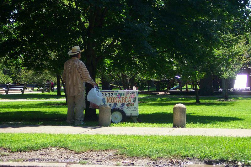 Ice Cream Vender