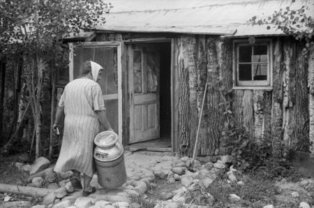 Mrs. Howard bringing empty milk can into home which she and her daughter built, Aitkin County, Minnesota john Vachon 1939