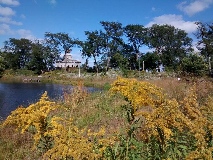 Autumn lincoln park