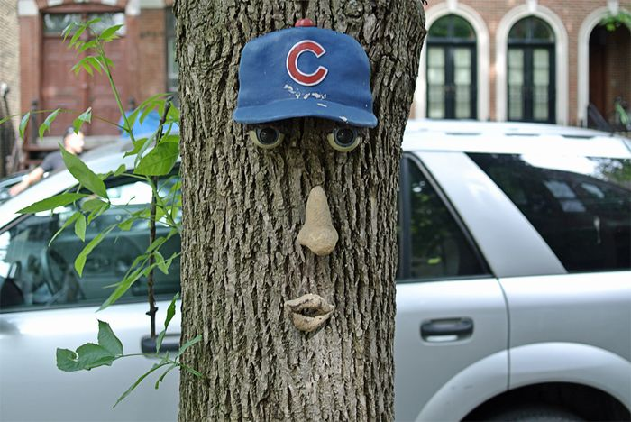 Cubs reduced