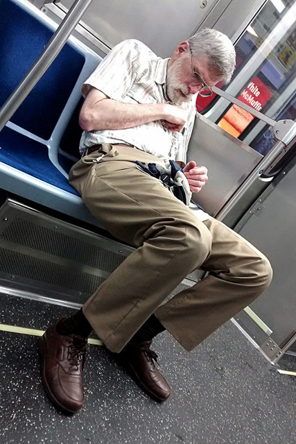 Chicago Red Line Passenger