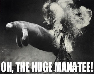 The_huge_manatee